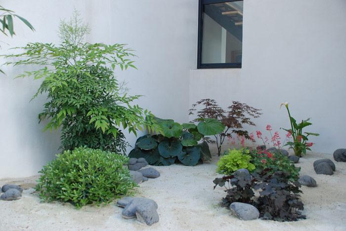 COVID-19 : le plaisir d'un jardin !